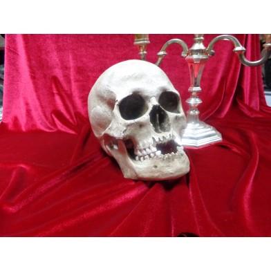 Модель человеческого черепа из скульптурного камня № 2